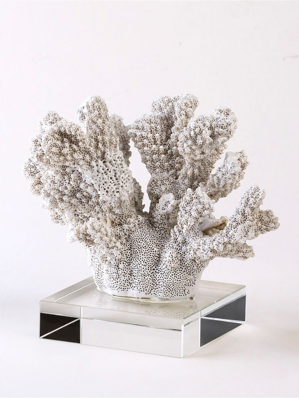 Landmark-Decor-DEMILO-20CON-20BASE-Coral-0
